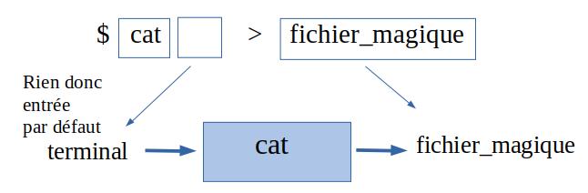 Utilisation de cat sans entrée définie
