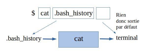 Utilisation de cat sans sortie définie