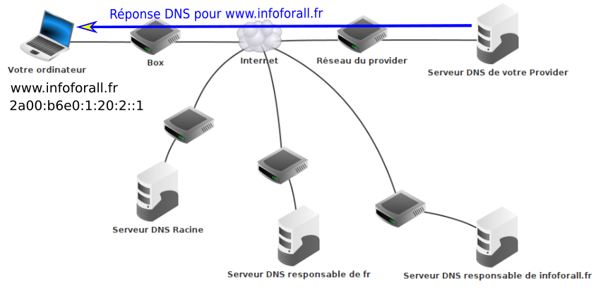 Réponse DNS du serveur DNS