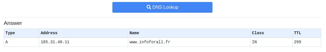 Formulaire où on peut rentrer le nom du site dont on veut trouver l'IP